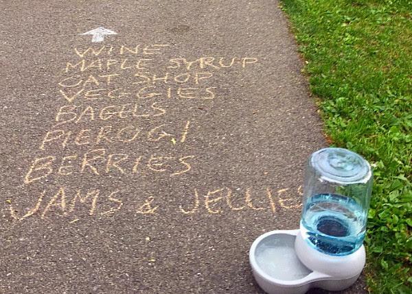 Medford Farmers Market sidewalk chalk