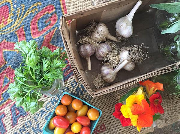medford-farmers-market-brigham